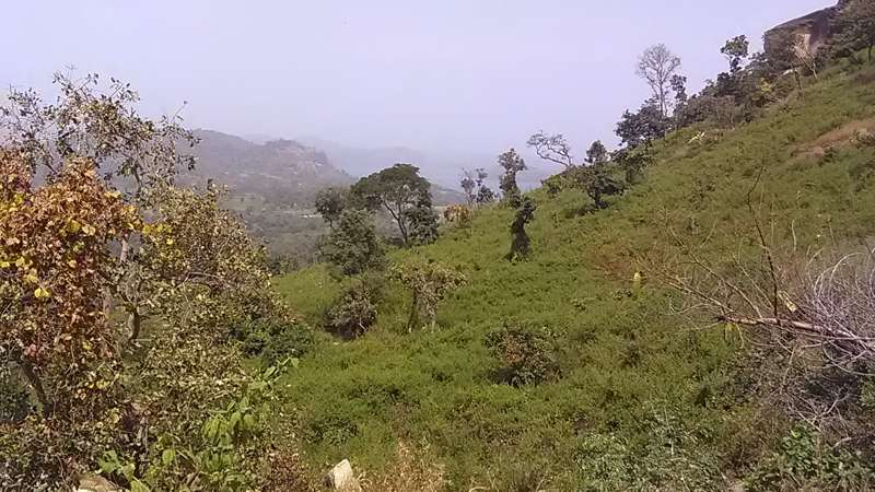 Abubakar, Nigeria